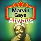 Marvin Gaye альбом Always
