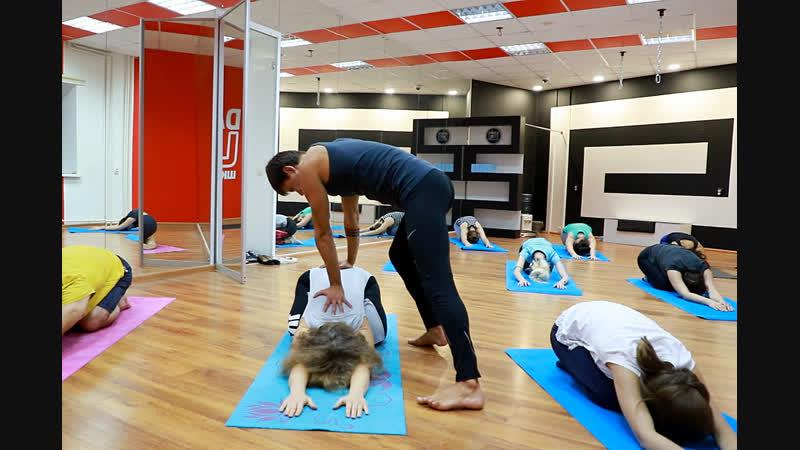 Йога в Белгороде в Dance Life Уроки йоги для начинающих с нуля Хатха крийа винъяса флоу