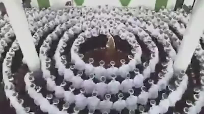 Братьев качнуло