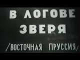 В логове зверя (Восточно-Прусская операция) / 1945 / ЦСДФ