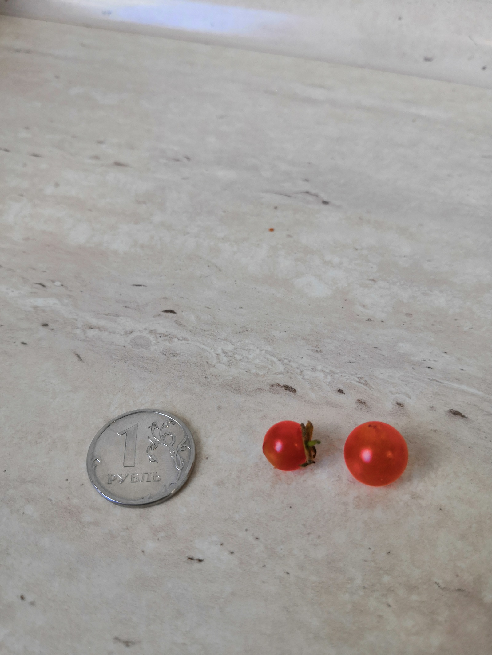 Когда решил вырастить помидорки черри