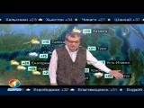 Погода сегодня, завтра, видео прогноз погоды на 28.7.2018 в России и мире