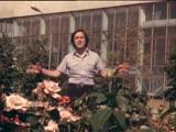 Ренат Ибрагимов - Тот город - 1979