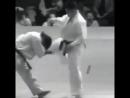 Иппон в Кёкусинкай карате. Одним ударом наповал в бою. Кёкусинкай как вид боевого искусства.