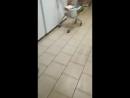 В Казани, в магазине «Пятерочка» произошло double penetration: в самом магазине провалился пол, а в