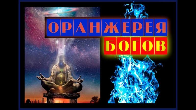 Разговор с Люцифером Книга II. Часть 38. Оранжерея богов.