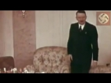 Adolf Hitler's favourite flower is the simple Edelweiss!_(360p).mp4
