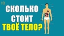 Цена Органов Человека на Черном Рынке: Сколько Стоит Твое Тело? Почка за iPhone