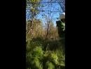 верёвочный парк рутения