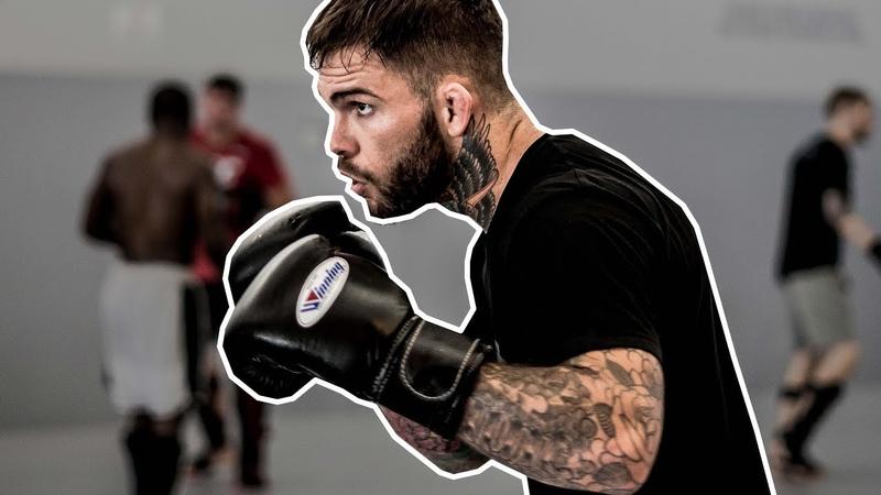 NoLove Camp Ep0 : Muay thai training - UFC august 4 rematch - Team Alpha Male