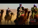 ✔ Бедуины в пустыне наткнулись на Спецназ РФ