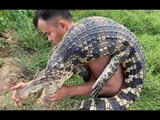 Primitive technology with survival skills Capture Giant Crocodile (looking for food)