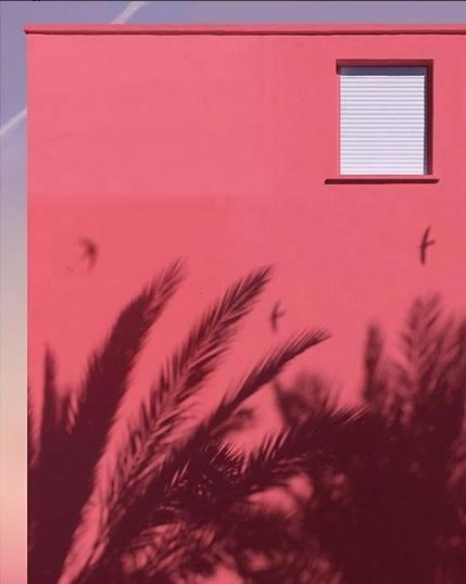 50 оттенков розового в минималистичных работах французского фотографа Андриа Дариус Панкраци (Andria Darius Pancrazi)