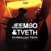 JEEMBO & TVETH   27.03 Пермь   MICHURIN