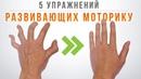 Пять упражнений для художников для развития моторики рук ответы на вопросы