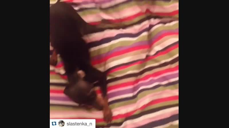 Айдар Гараев Личное видео из Instagram 31.01.2016