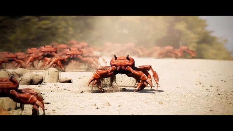 Crab Rave Dreamscape