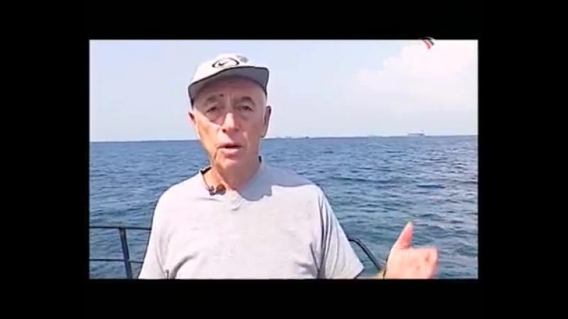 Научная проблема - Рыба в Черном море или забавы гребневика мнемиопсиса