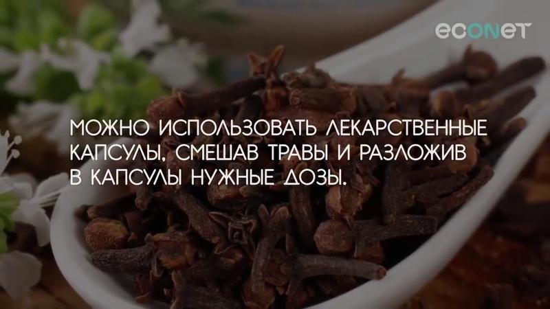 КАК избавиться от ПАРАЗИТОВ в организме Русская Тройчатка ¦ ECONET RU
