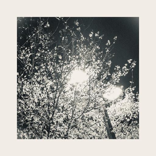 EVO альбом Where Will We Go (feat. Deana DiLandro)