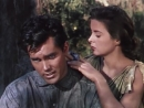 Пленники болот / Lure of the Wilderness 1952