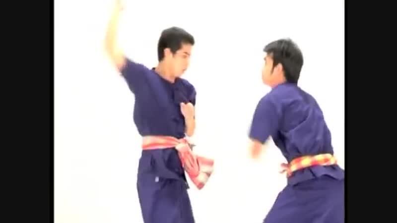 แม่ไม้ฝึก ๑ ขุนยักษ์จับลิง _ Mae Mai Practice 1 Khun Yak Jab Ling