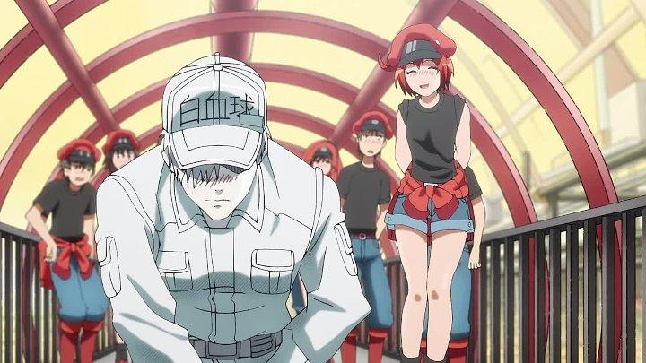 AniMaunt 11 серия Работа клеток Hataraku Saibou Berofu Oni