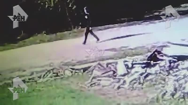 Сим-карты, фотографии и Библия зачем керченский убийца перед атакой сжег вещи и закопал сейф