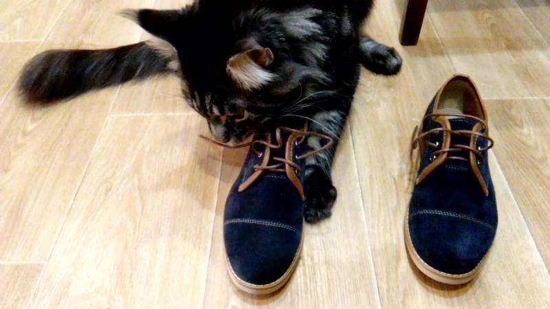 Винсент думает, что это ему купили новые ботинки