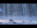 Prelude Op.28 No.15 Raindrops - Chopin (