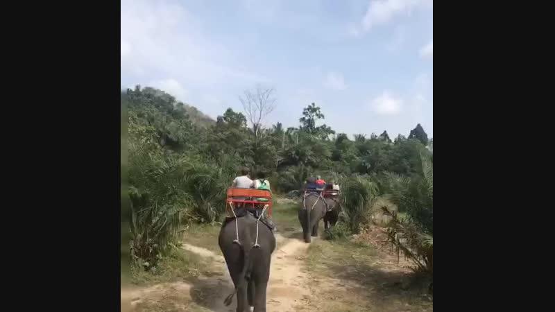 Спасибо за солнечный видеоролик о тайских каникулах от Ирины😊