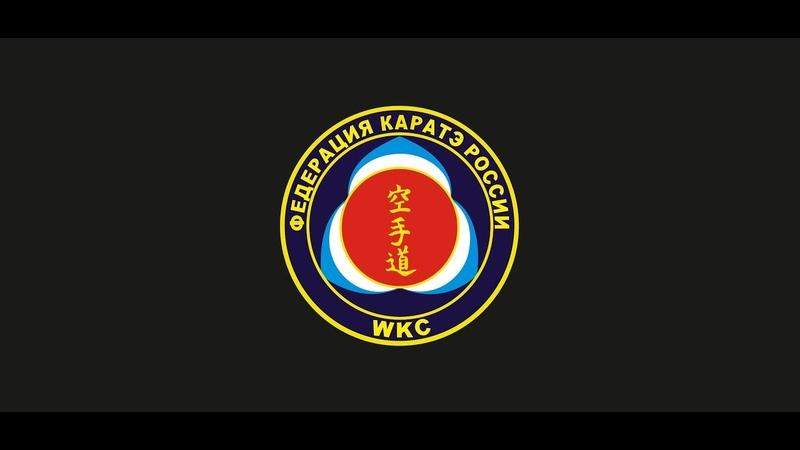 10 Юбилейный Чемпионат и Первенство России по Каратэ WKC. 2019 год Новочебоксарск. чаcть 1