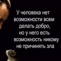 Анкета Aleksandr Timohin