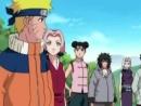 Наруто - 1 сезон, 197 серия (Naruto)