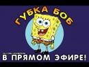 Губка Боб Квадратные Штаны в прямом эфире! 8-9 сезон (Спанч Боб Сквэ Пэнтс)