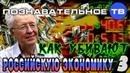 Как убивают российскую экономику 3 (Познавательное ТВ, Валентин Катасонов)