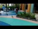 Местный Братишка )) Порт Курасао! - Карибы