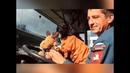 Психологом московских спасателей стала такса