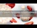 Острый промиелоцитарный лейкоз