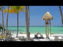 Barcelo Bavaro Palace 5* HD ОБЗОР ОТЕЛЯ
