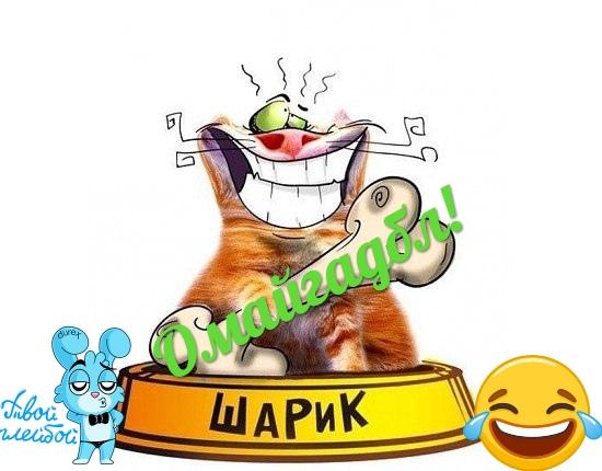 Алексей Вавилов | Макеевка