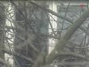 Лесной городок проект Дачники с Машей Шаховой 2001 2004 гг 26 выпуск