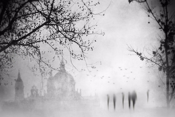Фотограф Мария Тудела специализируется на эстетических, эмоциональных снимках, напоминающих аналоговые изображения. Своими туманными пейзажами, расплывчатостью и сюрреализмом она уводит зрителя