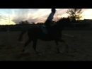 Jumping training / 13 sept