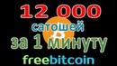 FreeBitcoin 12 000 сатошей за 1 минуту на автомате! Стратегия БОМБА!