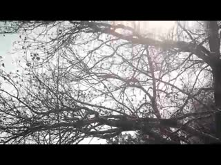 Киа Спортейдж - Мазда СХ 5, тест обзор на лесоповале