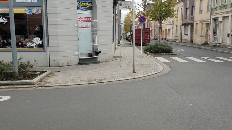 Крыса гоняет кота. г. Эш-сюр-Альзетт. Люксембург
