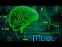Как работает мозг человека (рассказывает Филипп Хайтович) rfr hf,jnftn vjpu xtkjdtrf (hfccrfpsdftn abkbgg [fqnjdbx)