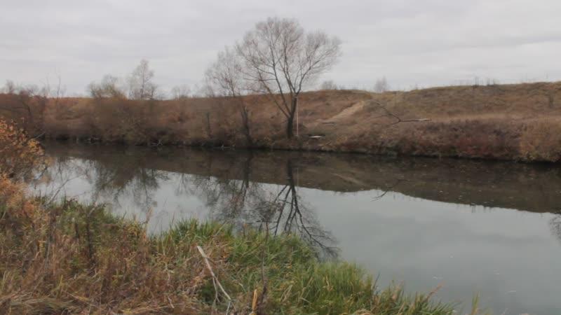 река Осётр в Зарайском районе (Московская область)