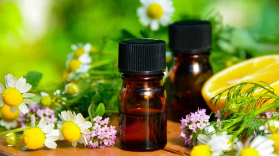 Какие химические вещества эфирного масла ромашки убивают рак